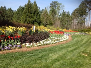 The Wade entrance flower bed